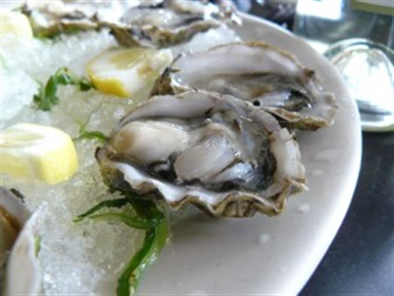 Eat Oysters in Destin  Help Local Waterways